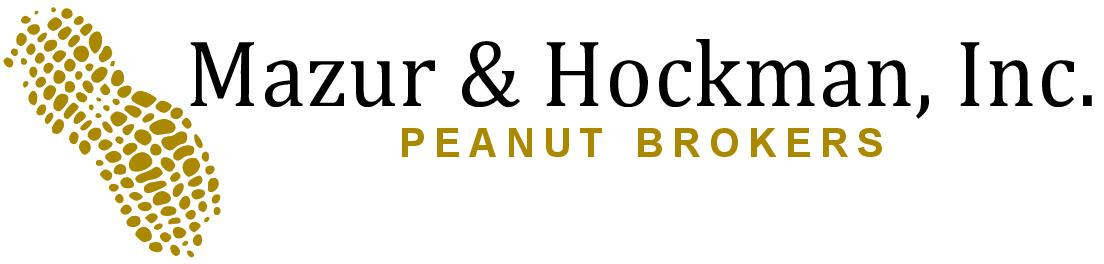 Mazur & Hockman Inc.